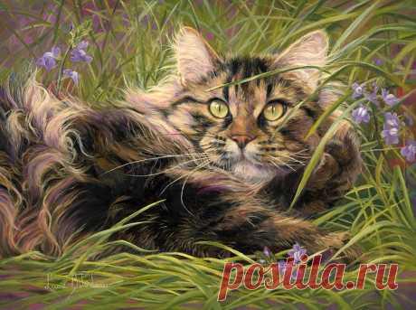 Канадская художница Lucie Bilodeau и ее кошки