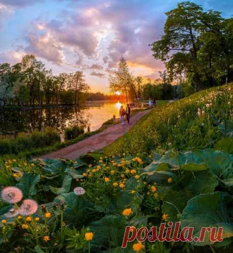 Весенние прогулки по дорожкам парка в городе Гатчина, Ленинградская область. автор фото – Федор Лашков: nat-geo.ru/photo/user/27510/