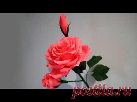 Beautiful big rose with buds  (Красивая большая роза с бутонами )