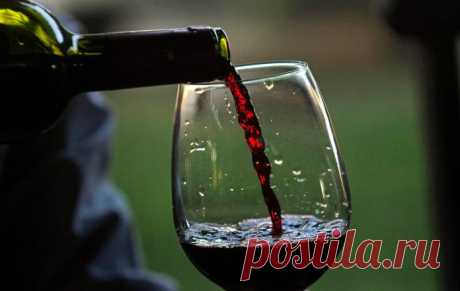 20 facts about wine which can strongly surprise you | In the world of interesting