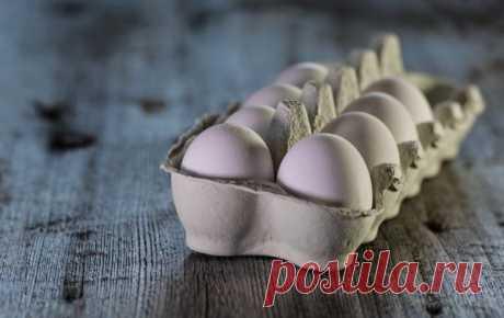 Чтобы уровень сахара в крови не повышался пейте какао и кушайте яйца - Курьер.Среда.Бердск