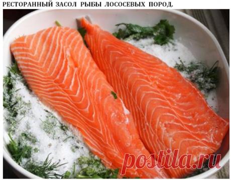 Ресторанный засол рыбы лососевых пород