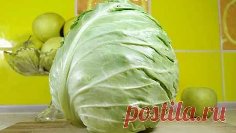 3 самых простых салат из капусты