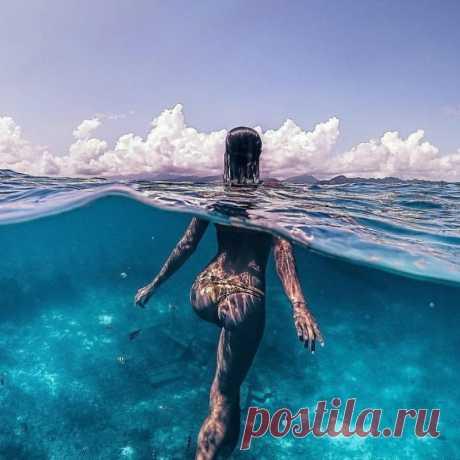 Удивительные фотографии, которые были сняты под водой Сегодня сложно кого-то удивить фотографиями из под воды, земли и даже из космоса. И тем не менее, некоторые фотографы умудряются время от времени сделать действительно классные подводные снимки. Некоторые из них мы собрали сегодня в этой подборке...