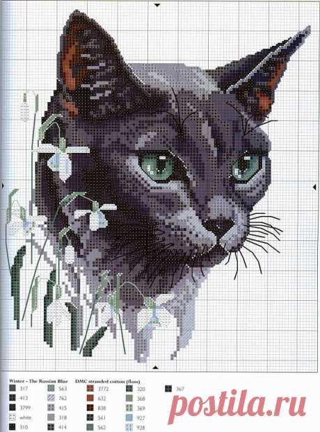 Схемы вышивки крестом: кошки / Схемы вышивки крестиком / PassionForum - мастер-классы по рукоделию