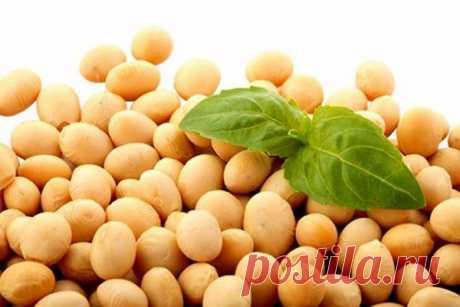 Соя: полноценный белок