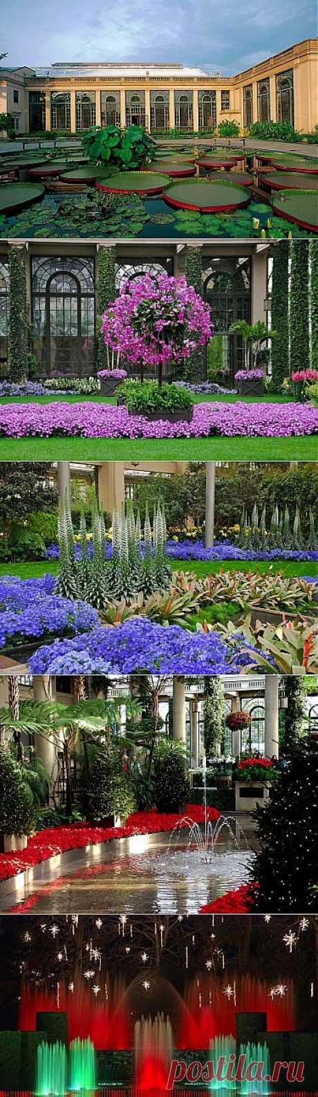 Плейкаст «✵ Райские сады Пьера Дюпона ✵»