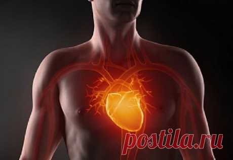 Этот продукт особенно полезен для здоровья сердца - Медицина 2.0