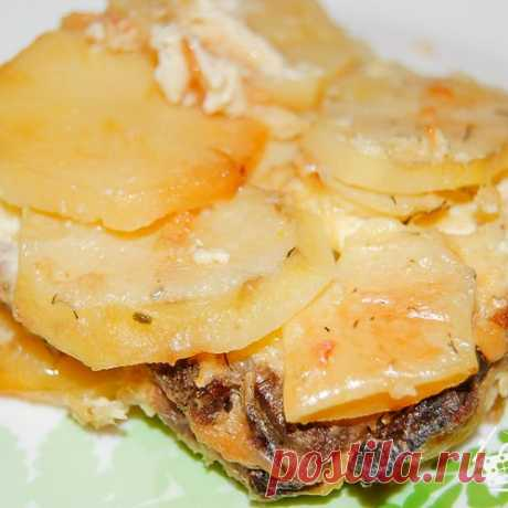 Potato baked pudding with meat and mushrooms