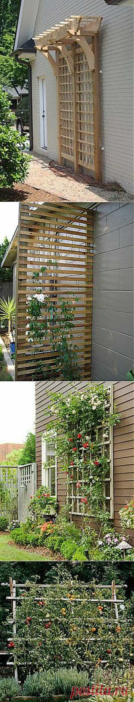 trellis | The Great Outdoors