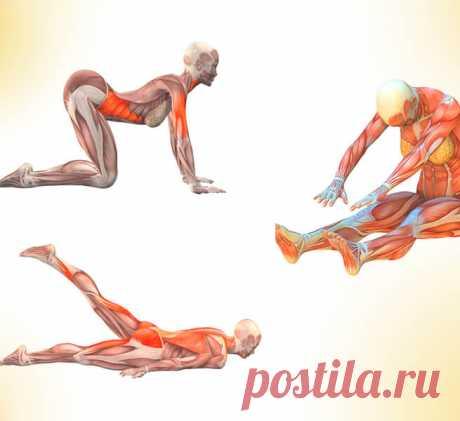 7 упражнений для женщин от Кацудзо Ниши Эти упражнения легко формируют совершенные линии женского тела – подтягивают отвисшие мышцы, убирают лишний жир и помогают сформировать красивую фигуру.