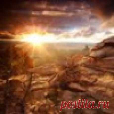 шынар айтбаева