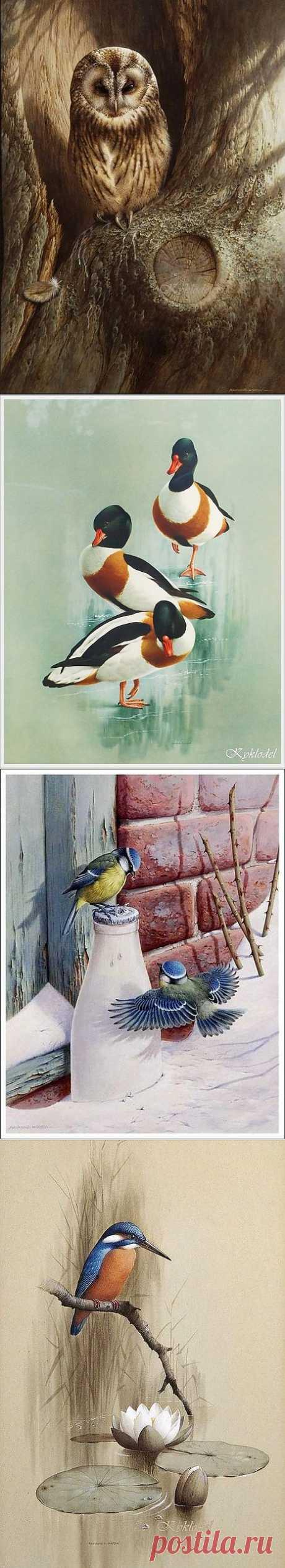 Птицы акварелью Raymond Cyril Watson - Ярмарка Мастеров - ручная работа, handmade