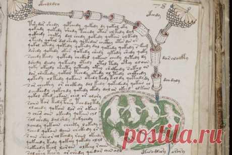 Британский лингвист заявил о расшифровке манускрипта Войнича — Российская газета