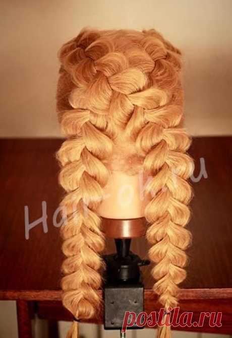 Прически   Волосы