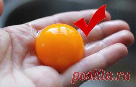 Отделить белок от желтка - легче некуда! | СОВЕТОФФ | Яндекс Дзен