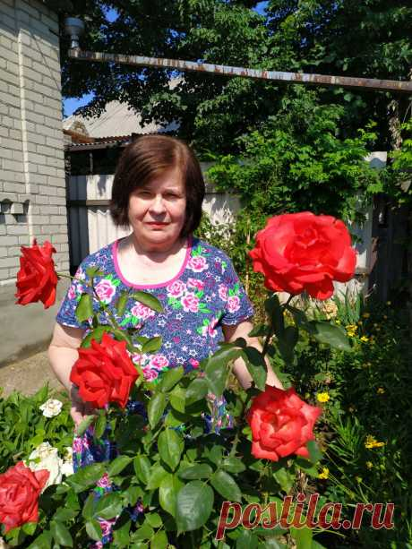 "О моем блоге! Почему ""6 соток""? | 6 соток. Светлана Аниканова | Яндекс Дзен #сад #дача #огород #цветы"