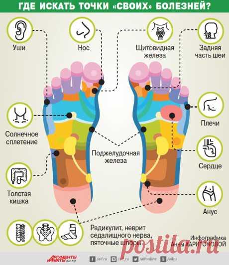 Старость начинается с ног. Где искать точки «своих» болезней? | Здоровая жизнь | Здоровье | Аргументы и Факты