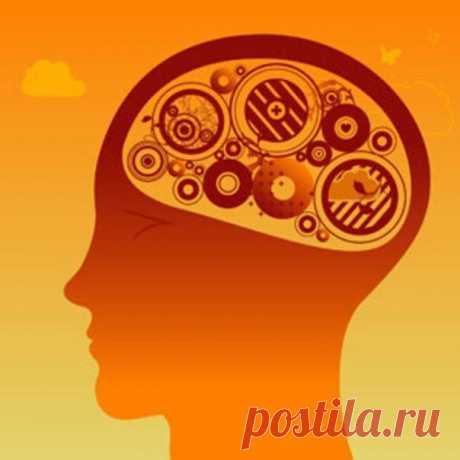 Простые способы максимально стимулировать работу мозга.