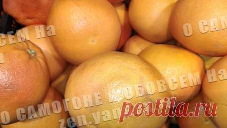 Грейпфрут –идеальный фрукт для настоек. Рецепты грейпфpутовых нacтоек | О САМОГОНЕ и ОБОВСЕМ | Яндекс Дзен