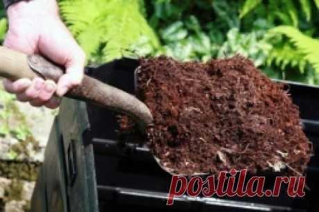 10 правил хорошего компоста - Садоводка
