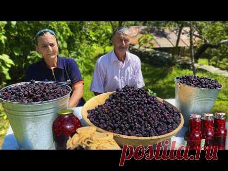 Сбор Дикой Ежевики в Горах и Приготовление Ежевичного Пирога и Варенья в Деревне