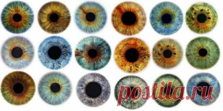 Color of eyes can tell about a state of health of the person. Conclusions which nobody expected!