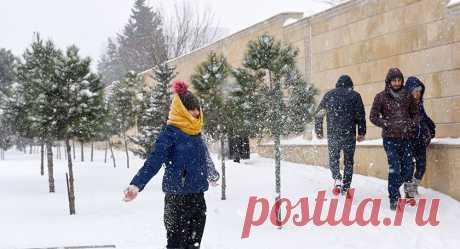 Реакция австралийцев на снег. Впечатление иностранцев о погоде в Сибири. | Путешествия и Жизнь | Яндекс Дзен