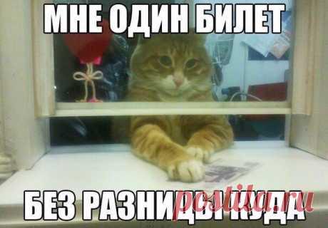 Анекдоты. Выпуск 732 — MustBeFunny.ru - юмор с цензурой каждый день