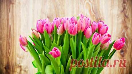Звучить весняна мелодія  Ведуча 2  Весна – найпрекрасніша пора року. З її приходом оживає природа, повертаються із далеких країв птахи, квітнуть дерева. Прийшла весна!  Ведуча 1  Люблю, весну, та хто її не любить,  Коли життя цвіте,як пишний сад,  І мов у сні шепочуть листя-губи,  І