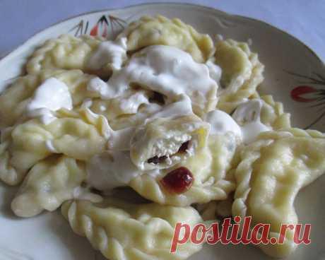 Вареники на молоке с творогом и клюквой – не развариваются | Alinina кухня | Яндекс Дзен
