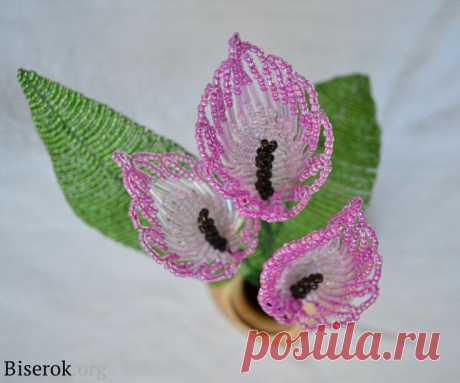 Цветы из бисера: каллы — Сделай сам, идеи для творчества - DIY Ideas