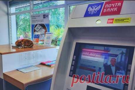 Форум: «Почта банк» оштрафовали на 300 тыс. рублей за мелкий шрифт в рекламе | 9111.ru | Страница 5