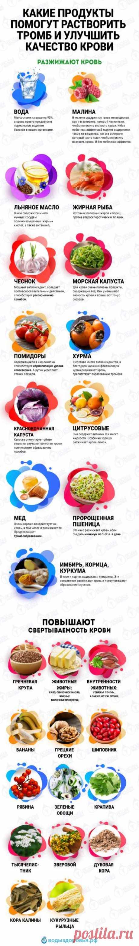 Какие продукты помогут растворить тромб и улучшить качество крови