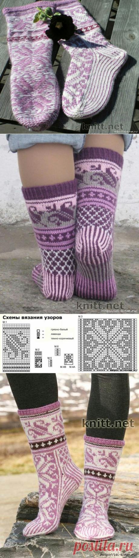 Los calcetines con zhakkardovym por la cinta
