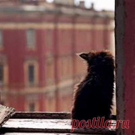 елена чугунникова