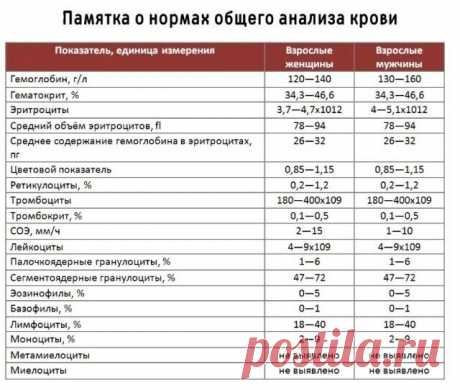 Вот как расшифровать анализ крови самостоятельно, без врача 📝 📝 | OK.RU
