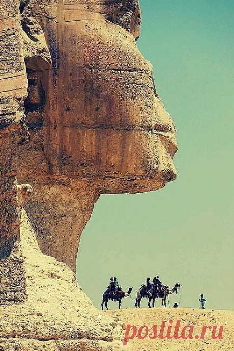 Большой Сфинкс на западном берегу Нила в Гизе — древнейшая сохранившаяся на Земле монументальная скульптура. Египет
