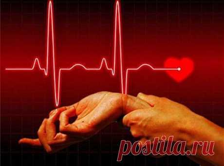 В ритме жизни: нормальный пульс человека | ПолонСил.ру - социальная сеть здоровья