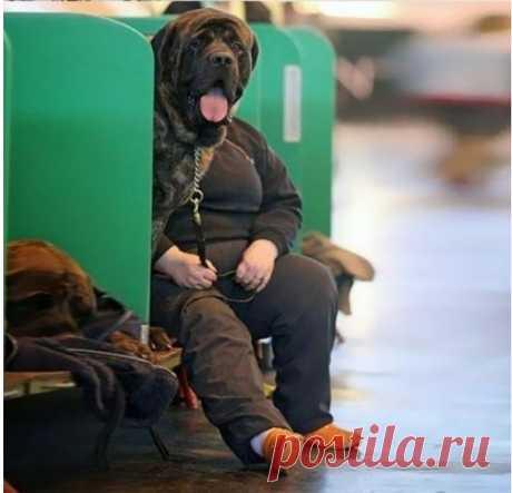 Gallery.ru