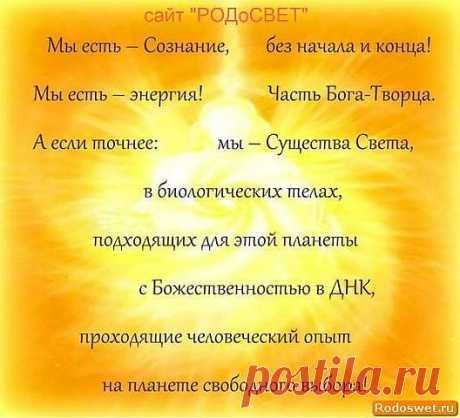 """https://www.rodoswet.ru/ """"РОДоСВЕТ"""""""