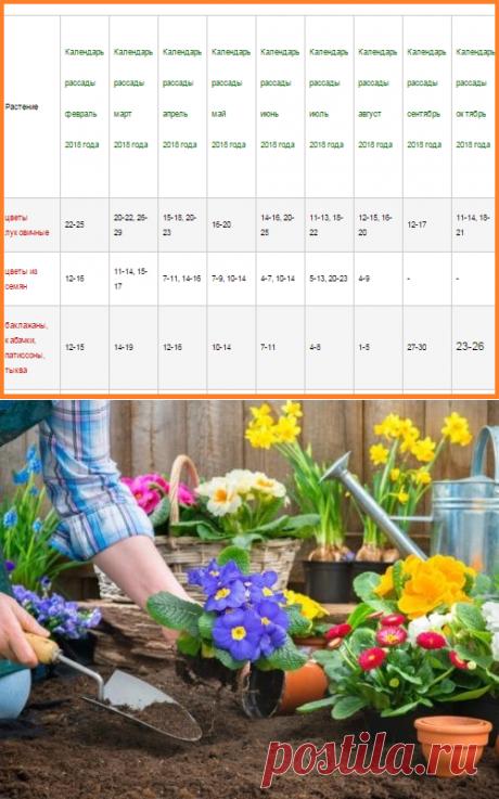 El calendario de luna de la plantación de las plantas para 2018 año. La siembra de las plantas del pimiento, el tomate, los colores por el calendario de luna