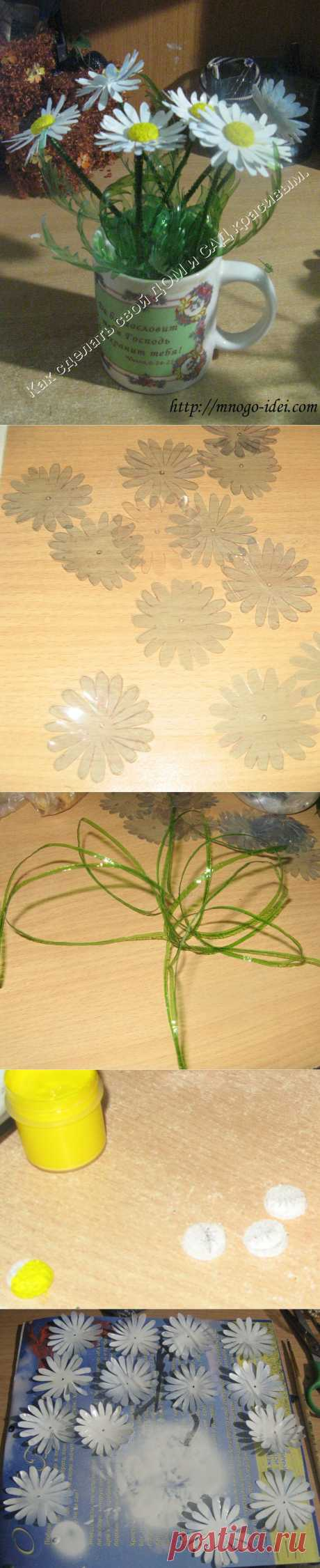 Camomiles from plastic bottles of MK. |