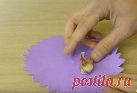 Как просто почистить чеснок и остаться с чистыми руками — Лайфхаки