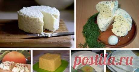 ТОР — 14 Подборка вкусных домашних сыров! — В РИТМІ ЖИТТЯ