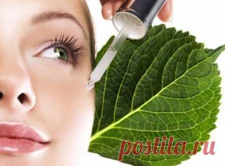 4 масла, которые спасут вас от морщинок вокруг глаз!