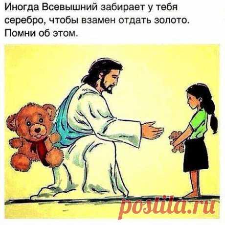 Профиль пользователя на Cossa.ru