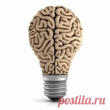 7 причин, из-за которых ваш мозг отказывается работать Если вы думаете, что прокачивать нужно исключительно своё тело, то вы очень ошибаетесь, ведь за всё в нашем организме отвечает именно мозг и даже за пресловутые мышцы, которым он подаёт импульс к накачиванию. Если вы пренебрегаете принципами, которые должны помогать вашему мозгу активно...