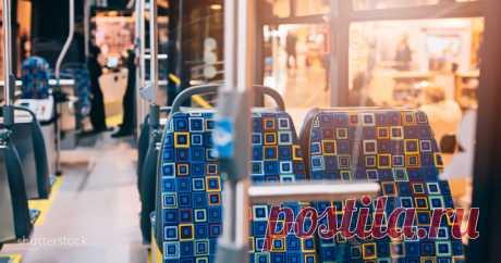 Есть веские причины, почему сидения в автобусах кислотного цвета . Милая Я