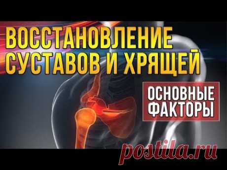 Recipe of restoration of joints of 100%) effect
